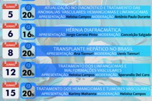 mai_webinar_agenda_5